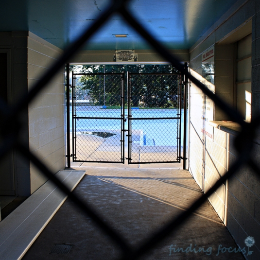 community pool through chain link fence photo