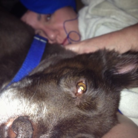 A bad day with my puppy protector. I could not handle any outside noise that day so I had to wear ear plugs, my head was pounding so I was using an ice pack, but my body temperature was lower than normal and wouldn't regulate, so I was covered with two blankets. *sigh*